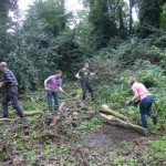 Clearing the fallen tree at the start of the day.
