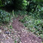Footpath clearance and maintenance