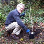 Committee member Nigel Duncan is ready to plant an elm sapling.